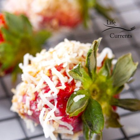 Coconut Dipped Strawberries - focus on one berry dipped in coconut wait to be nibbled on