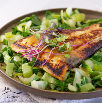 square crop of cooked fish on bok choy garnished with sprouts and sauce